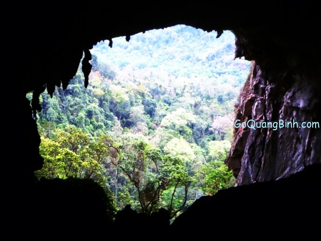 new caves in phong nha ke bang 2